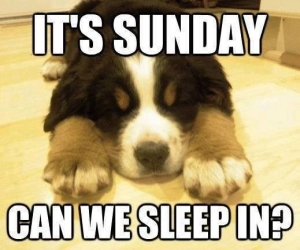 47306-Its-Sunday-Can-We-Sleep-In