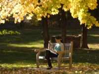 Top Three Things to Love About the Nazareth Campus in Fall